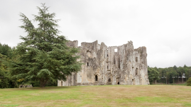 20190806.a-Old Wardour Castle-2916