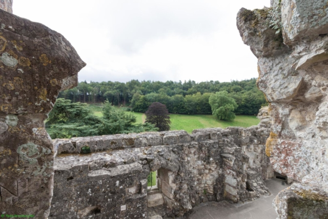 20190806.a-Old Wardour Castle-2943