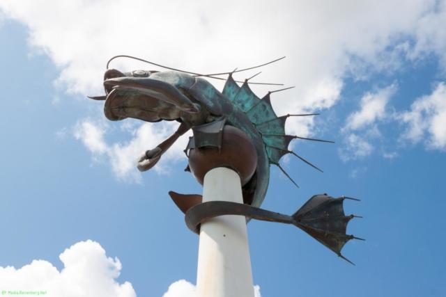 20190812.a-Plymouth-Nat.Marine Aquarium-3945