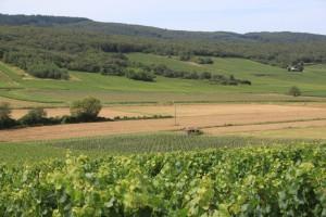 Haute Alpes de Provence 2012